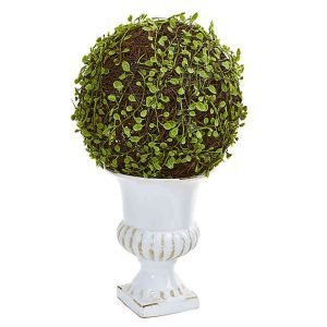 White Urn Topiary